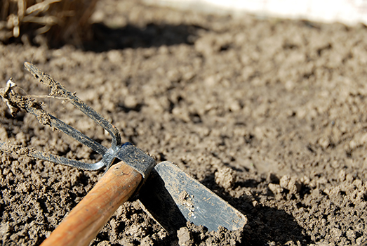 one dirty gardening hand tool
